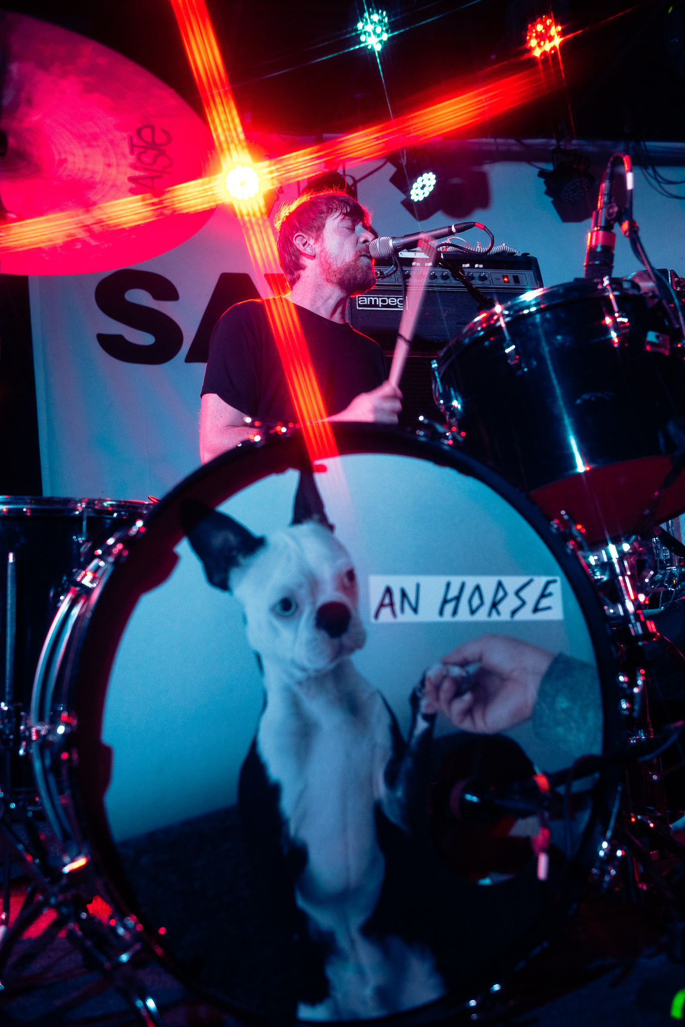 An Horse The Stone Pony Stars and Scars Photo