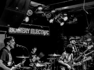Live Well Bowery Electric